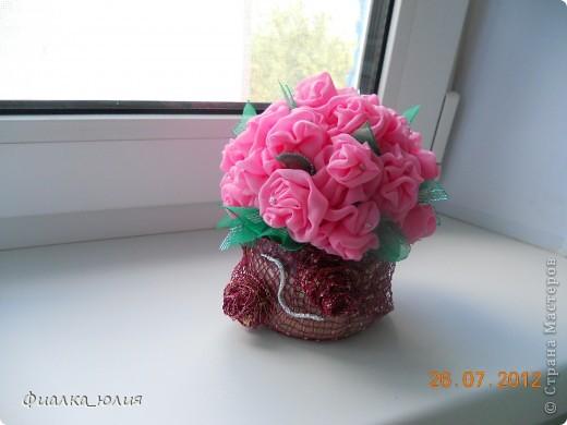 Розовый куст фото 1