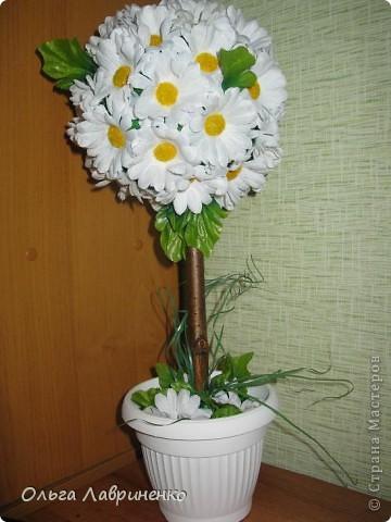 Ромашковое дерево Цветы искуственные, ствол натуральный - вишня. фото 1