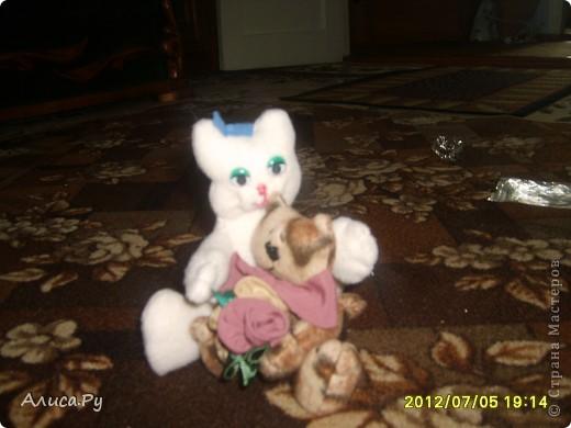 Сегодня я снова с похвастушечками, на этот раз от Анны (тётя Яблоня). Замечательные подарочки и конечно котёнок, ради которого и собрана была вся эта посылочка... Кстати, котика я назвала Маркизом))) фото 9