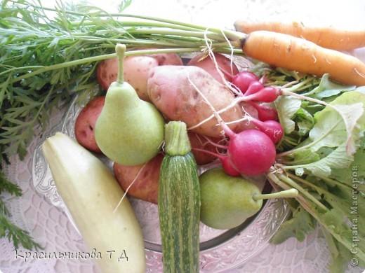 Веселые зверушки из овощей и фруктов фото 1