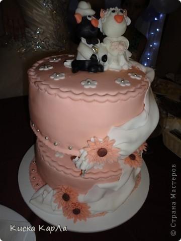 Не верьте, что пятница 13-ое - плохой день ... 13 июля 2012 года мой старший брат женился ... и этот день был очень счастливым !!! Сейчас я вам всё расскажу и покажу ... фото 43