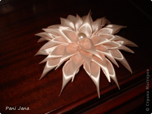 Лилии фото 3