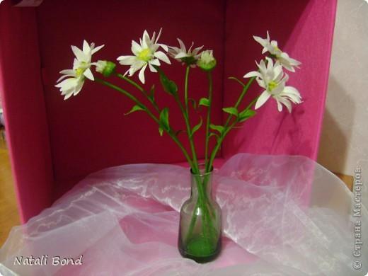 """Добрый вечер милые жительницы СМ!!!!!Очень люблю этот простой цветочек!!!!Цветок из детства))))плели веночки ....эх....как было это давно))))))Мне когда дарит их муж всегда так говорит-""""вот ромашки для моей Наташки"""" отсюда и название))))Насколько удалось повторить хочу услышать от Вас милые мастерицы!!!!!Приятного просмотра!!!!Желаю и всем окунуться в воспоминания о беззаботном  времени под названием....-ДЕТСТВО!!!!!! фото 2"""