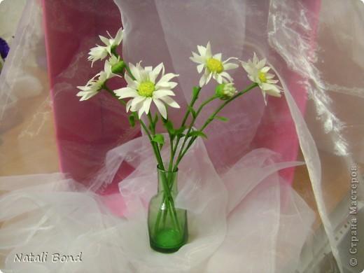 """Добрый вечер милые жительницы СМ!!!!!Очень люблю этот простой цветочек!!!!Цветок из детства))))плели веночки ....эх....как было это давно))))))Мне когда дарит их муж всегда так говорит-""""вот ромашки для моей Наташки"""" отсюда и название))))Насколько удалось повторить хочу услышать от Вас милые мастерицы!!!!!Приятного просмотра!!!!Желаю и всем окунуться в воспоминания о беззаботном  времени под названием....-ДЕТСТВО!!!!!! фото 3"""