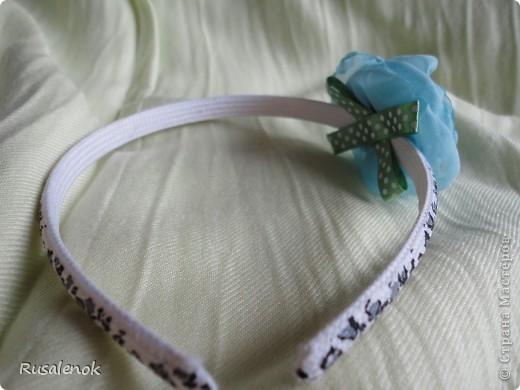 Ободок (цветок) фото 2