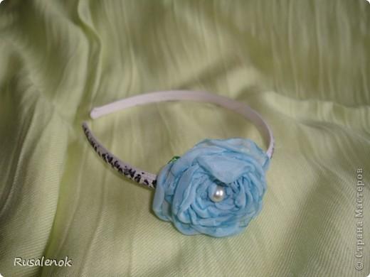 Ободок (цветок) фото 3