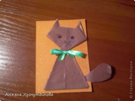 Котик на обмен