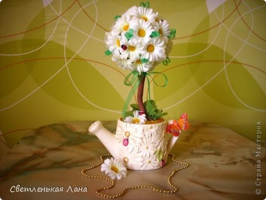 Дорогие мои, я снова с ромашковым...))) Сегодня деревцо у меня выросло в такой вот леечке! фото 4