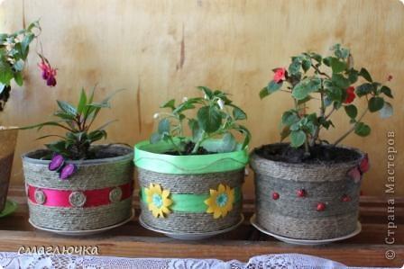 Были банки из-под шашлыка. Смотрела я на них - удобные по размеры для посадки цветов. И бальзамины как-раз требовали пересадки. Вот так и появилось это трио.  фото 1