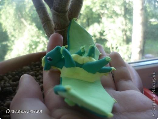 Привет!Сейчас я покажу вам мои работы из фимо и из пластики. фото 20