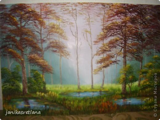 туман в осеннем лесу фото 1