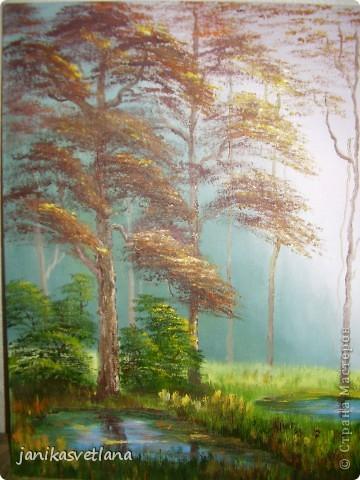 туман в осеннем лесу фото 2