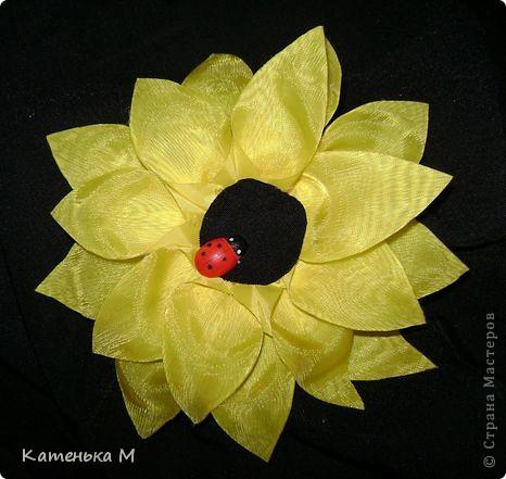 Солнечный цветок. фото 1