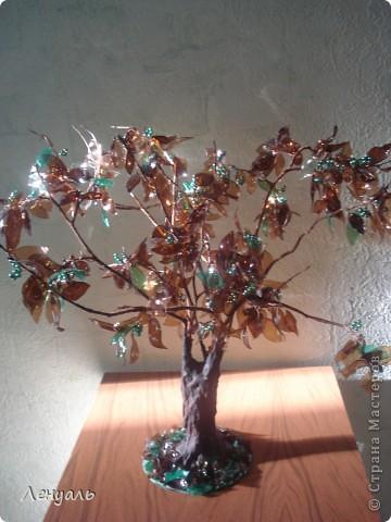 Деревья делала впервые.Саму идею увидела в интернете и захотела тоже попробовать.Вот получились у меня такие деревья. фото 2