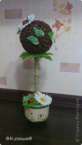 Всем привет!!!! Вот хочу поделиться с вами своим кофе - ромашковым деревцем!!! На улице солнце, жара вот и деревце получилось по летнему теплым!!!!! фото 1