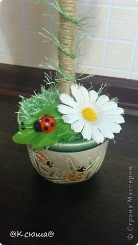Всем привет!!!! Вот хочу поделиться с вами своим кофе - ромашковым деревцем!!! На улице солнце, жара вот и деревце получилось по летнему теплым!!!!! фото 2