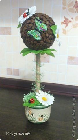 Всем привет!!!! Вот хочу поделиться с вами своим кофе - ромашковым деревцем!!! На улице солнце, жара вот и деревце получилось по летнему теплым!!!!! фото 4