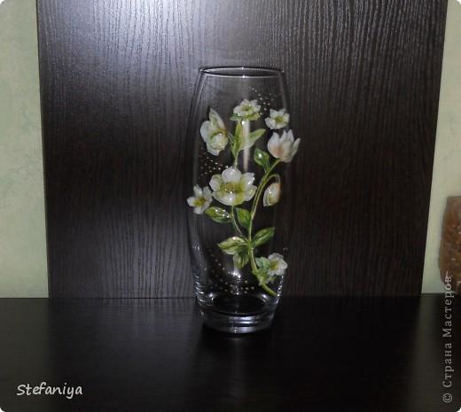 """ваза выполнена в технике """"Sospeso Transparente"""" от Моники Аллегро. веточка морозника. цветы на кустиках этого растения вогнутые, пыталась повторить, хотя на МК делала цветы магнолии выпуклые - старалась их """"вывернуть"""", чтобы показать всю красоту цветка. а вот  морозник - цветочек, который """"прячет"""" свою красоту в серединочке. делать объемными цветочки помогал сын. мне показалось, что у него получилось гораздо лучше, чем у меня!!!  в общем - ура красоте!! немного контурных завитушечек и все - ваза больше украшаться не позволила!!! хи-хи!!! фото 3"""