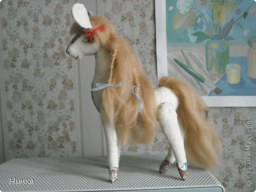 Лошадь с большими ушами фото 1