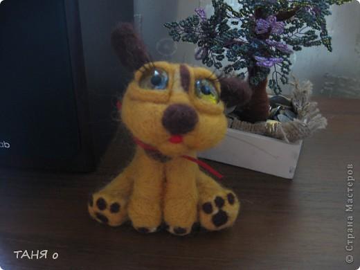 пёс Тишка фото 1