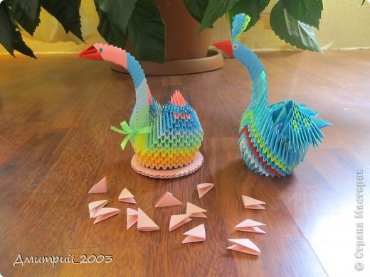 Я сделал первое своё оригами: радужного лебедя. (голубой полупавлин временно без хвоста - мамин:))  фото 3