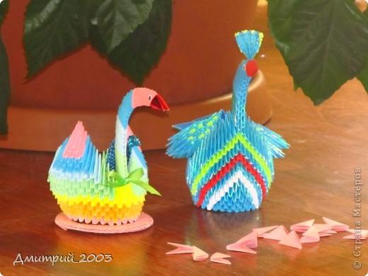 Я сделал первое своё оригами: радужного лебедя. (голубой полупавлин временно без хвоста - мамин:))  фото 2