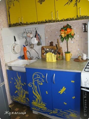 Добрый день жители СМ. Давно хотела похвастаться своей обновленной кухней. Но подготовка к выставке отнимала все время.  фото 7