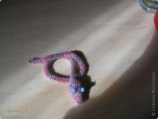 Змейюка. фото 1