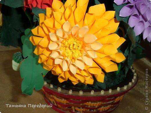 Доброго времени суток, дорогие жители СМ! Продолжаю свою серию цветочных корзинок. Сегодня хочу подарить ВАМ георгины, которые я снова поселила в корзинку от Светланы  http://stranamasterov.ru/node/377437     Георгин - каприз, непостоянство... фото 11