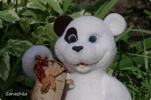 Миша фото 1