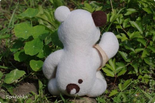 Миша фото 3