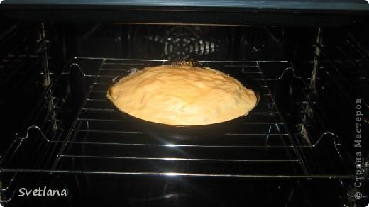 Здравствуйте, уважаемые жители Страны Мастеров! Хочу поделиться с вами рецептом вкусного и недорогого пирога.  Для теста понадобится:  - 3 яйца - 3 столовые ложки майонеза - мука - чуть-чуть соды  Вот и всё! фото 9
