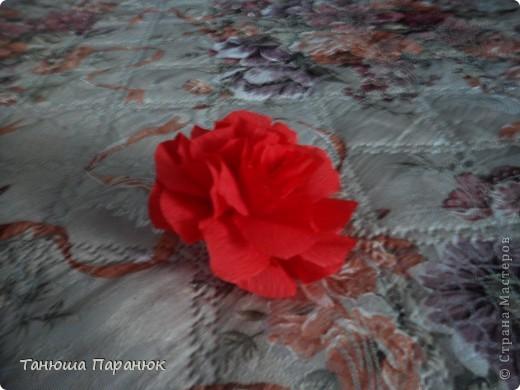 Букет роз + МК фото 9