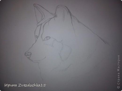 Решила не описывать, как рисовала, в интернете есть уроки, как рисовать такого волка))Но я рисовала не по урокам, просто с картинки) А4 фото 2