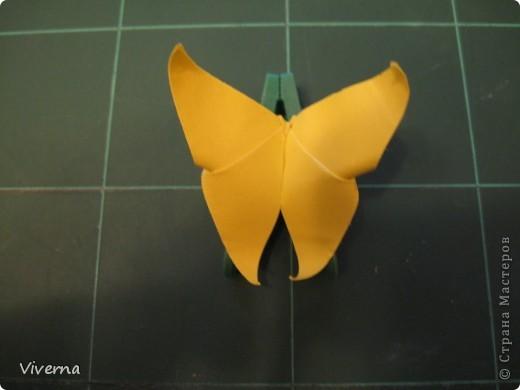 спросили меня в этой работе, как бабочку делала... http://stranamasterov.ru/node/396350  поискала, не нашла в СМ, чтобы ссылку дать..может искала не так....сама я ее научилась делать еще на заре увлечения оригами, лет 10 назад, в какой-то детской книжке...а т.к. складывается бабочка до невозможного просто, то сделав ее один раз, Вы уже никогда не забудете, как ее сделать )) фото 9