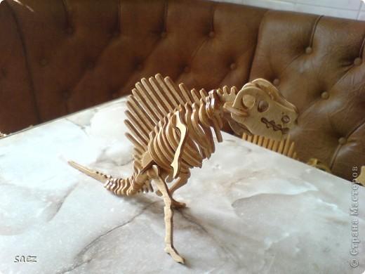 Динозаврики. фото 6