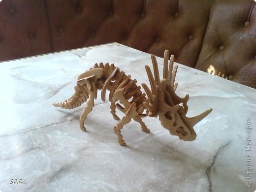 Динозаврики. фото 7