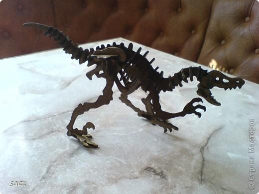 Динозаврики. фото 8