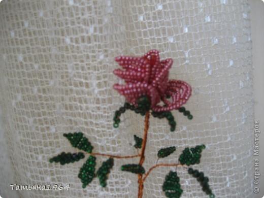 Проба пера - роза. фото 1