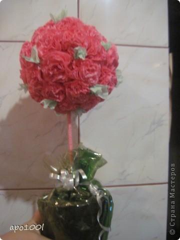 Мое розовое чудо. фото 4