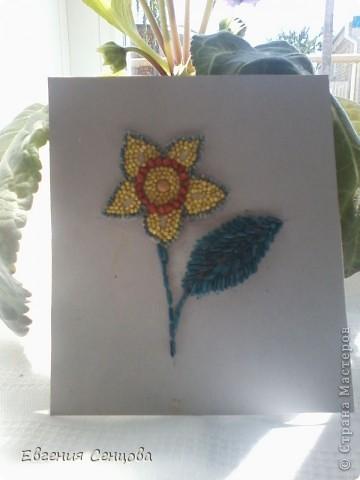 Это первая моя работа цветок из крупы фото 1