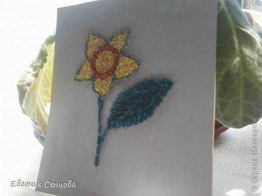 Это первая моя работа цветок из крупы фото 2