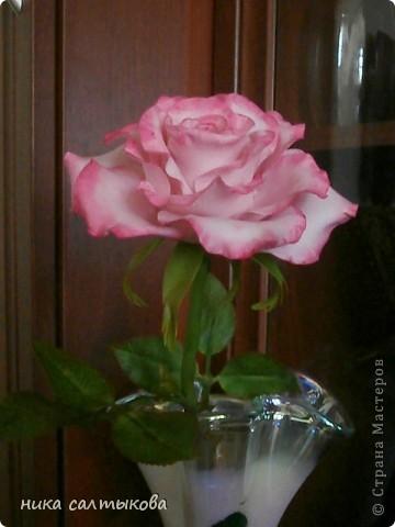 Приветсвую  вас, друзья!!! Попросили слепить розу для магазина. Еще нужно слепить орхидею и сакуру, орхидея на подходе, скоро выставлю))) фото 2