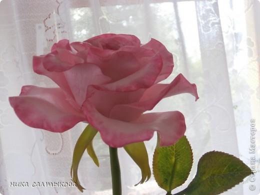 Приветсвую  вас, друзья!!! Попросили слепить розу для магазина. Еще нужно слепить орхидею и сакуру, орхидея на подходе, скоро выставлю))) фото 6