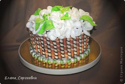 Шоколадный бисквит. Мусс шоколадный творожно-сливочный с лепестками миндаля, дробленым грецким орехом и молотой фисташкой. Шоколадный крем-ганаш. Вафельные трубочки (ореховые, шоколадные). Мастика. Кандурин
