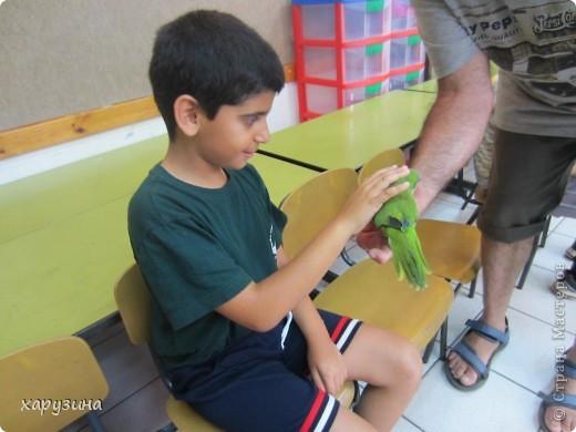 Пятиклассник Маор демонстрирует изготовленную им птицу-марионетку. фото 40