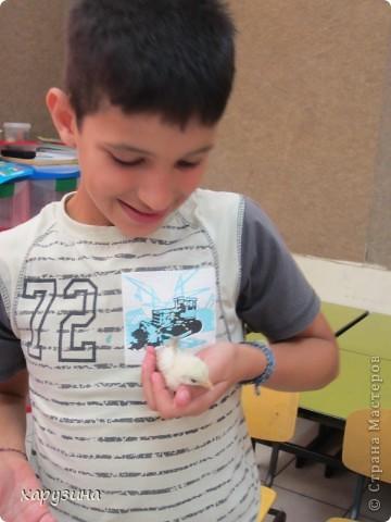 Пятиклассник Маор демонстрирует изготовленную им птицу-марионетку. фото 43