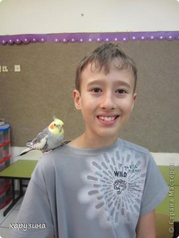 Пятиклассник Маор демонстрирует изготовленную им птицу-марионетку. фото 41
