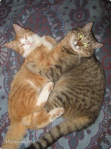 А знаете, друзья, огляделась я недавно вокруг и поняла... А ведь кошек-то у меня совсем немало! И даже много! Настоящие и ненастоящие, покупные и сделанные своими руками, съедобные и несъедобные. Заинтриговала? Тогда поехали! Эти два брата-акробата сделаны из солёного теста. Идеей вдохновилась от работ ANAID http://stranamasterov.ru/node/114243. Только пока это полуфабрикаты, ещё до конца не расписанные. Хочется придумать что-то особенное... фото 32