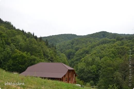 Добрый день, жители СМ! На прошлой неделе я с родителями съездили к бабушке в Закарпатье на пару дней и теперь хочу поделиться с вами красотой этого края. фото 17